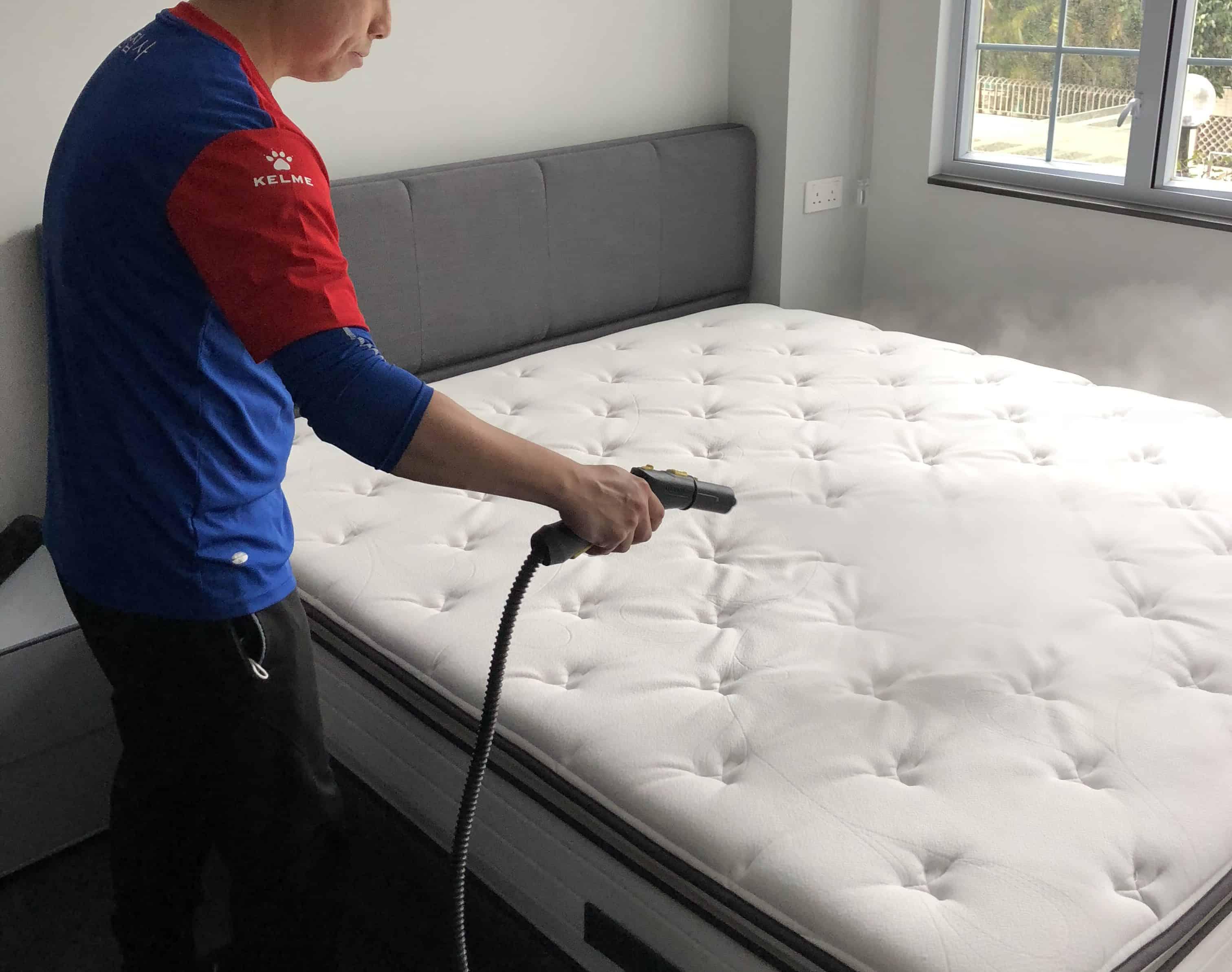 大掃除/床褥消毒